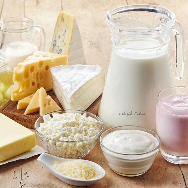 لبنیات بهترین پروتئین برای مواد غذایی جایگزین گوشت