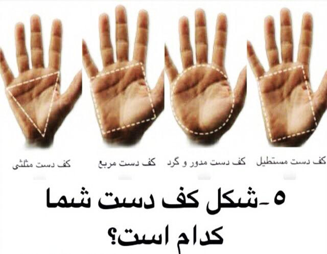 فال کف دست,فال شخصیت آدما از کف دست,شخصیت شناسی از کف دست,راز های کف دست,کف دست شما چه شکلی است,فال دست,طالع بینی کف دست,کف دست و شخصیت شناسی,فال از شکل دست