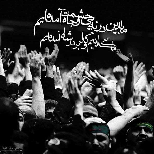عکس اربعین حسینی + متن