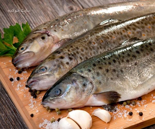 خواص ماهی قزل آلا برای لاغری و بارداری زنان