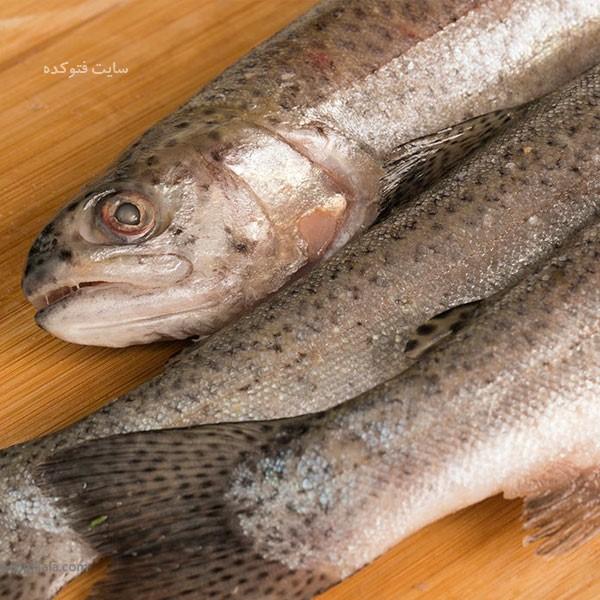 خاصیت ماهی قزل آلا برای بارداری و بدنسازی کودکان و زنان باردار