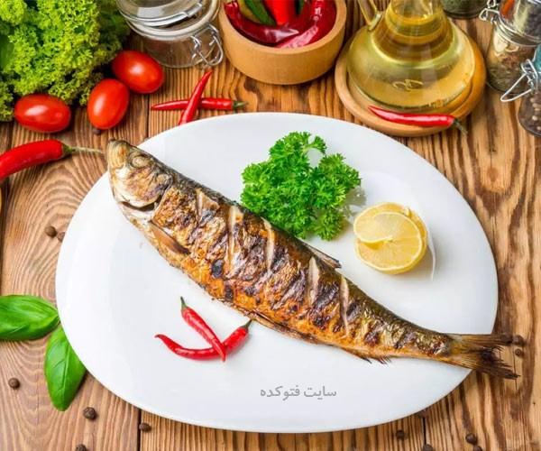 بهترین ماهی در دوران حاملگی
