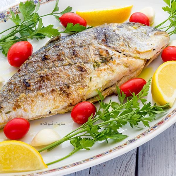 خاصیت خوردن ماهی در بارداری + مضرات و عوارض
