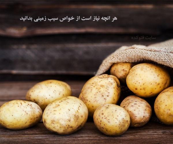 سیب زمینی در بدنسازی و لاغری