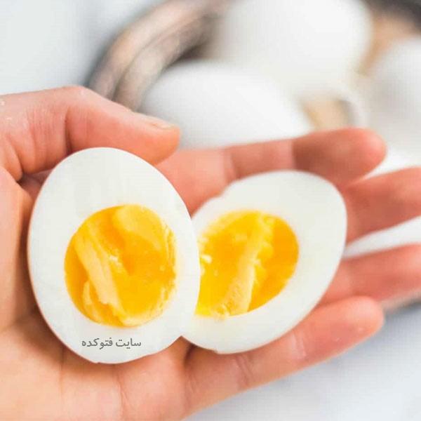 تخم مرغ برای بدنسازی + مضرات