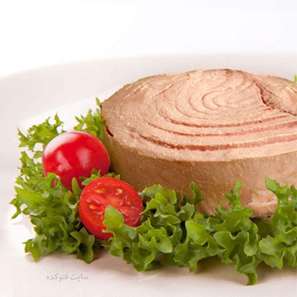 مضرات تن ماهی و فواید تن ماهی برای پوست و لاغری و کاهش وزن