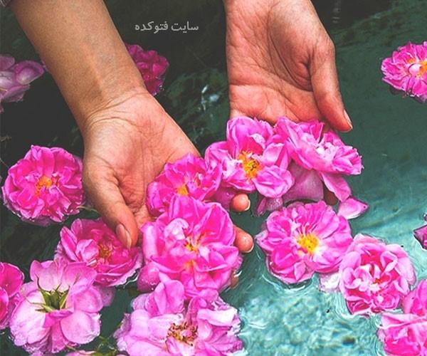 خواص زیبایی گلاب