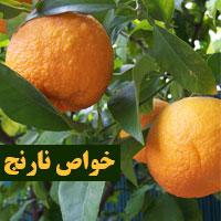 خواص نارنج برای لاغری و سرماخوردگی