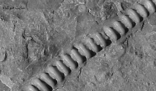 اکتشافات جدید و مرموز از مریخ با عکس
