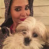 سگ آزاری مرسده با فیلم و عکس