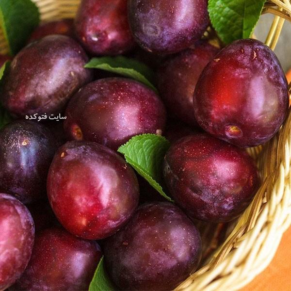چاقی با میوه آلو