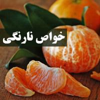 خواص نارنگی برای لاغری و بارداری
