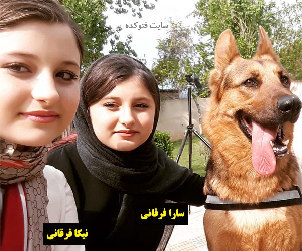 بیوگرافی سارا و نیکا فرقانی اصل در سریال پایتخت