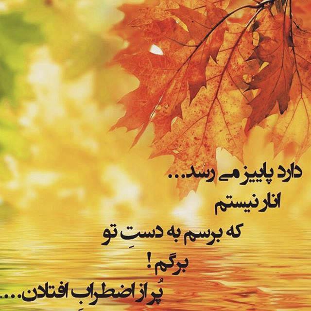 عکس پروفایل زیبا در مورد پاییز با جملات پاییزی