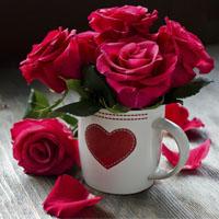 عکس پروفایل گل های رز قرمز عاشقانه و زیبا 97 - 2018