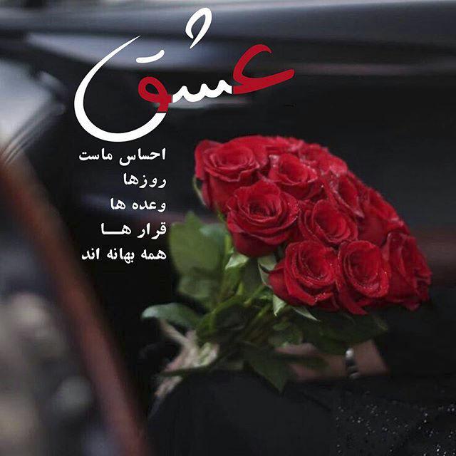 عکس نوشته گل رز عاشقانه با متن زیبا