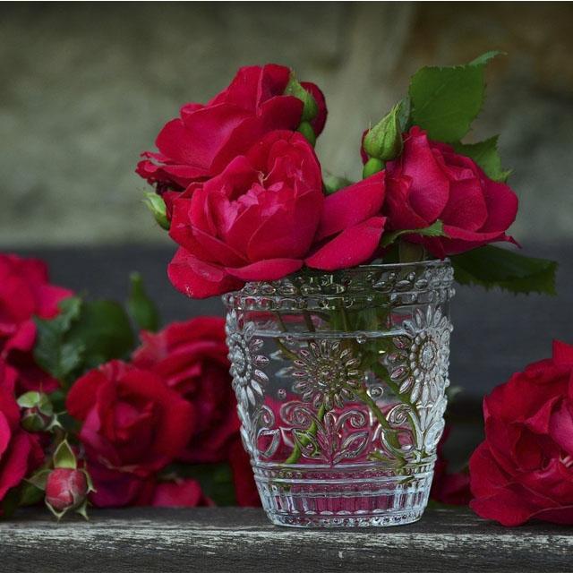 گل های زیبا برای پروفایل