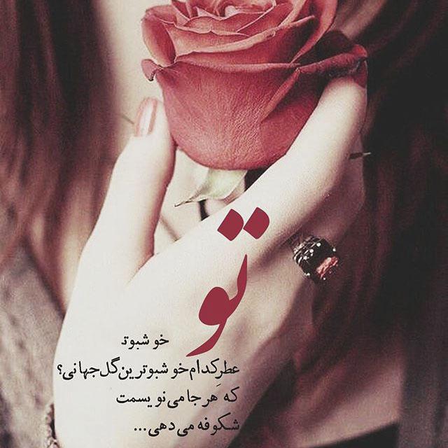 عکس نوشته گل رز قرمز عاشقانه