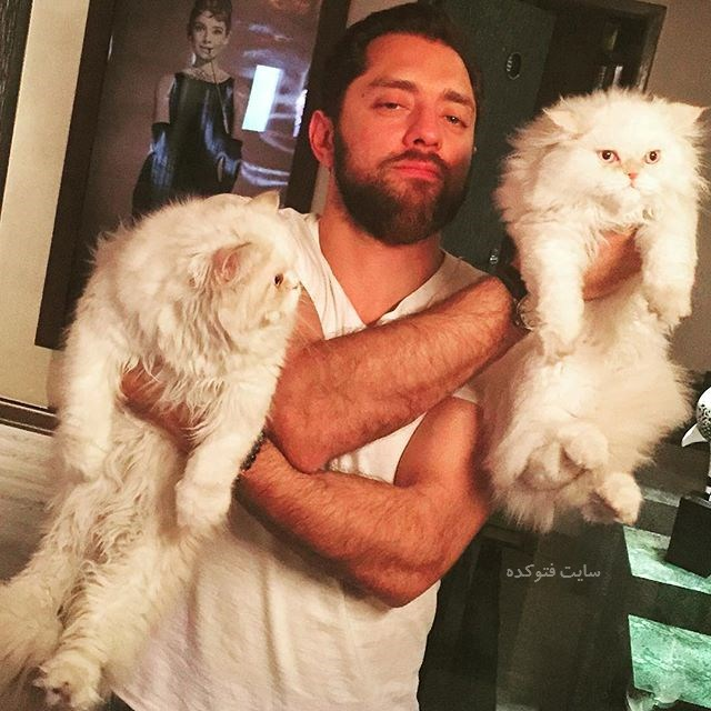 Bahram Radan و سگ های خانگی اش