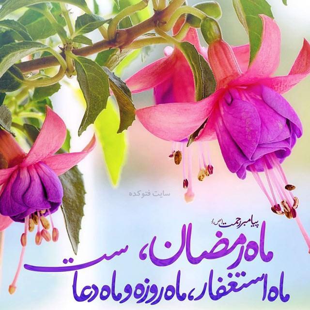 تبریک رسمی ماه رمضان با عکس نوشته خاص