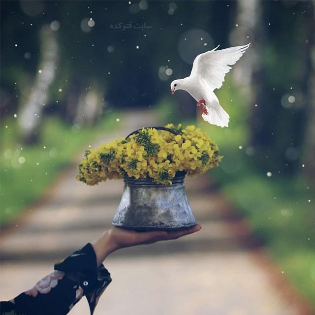 جملات ناب و قشنگ از زندگی با عکس