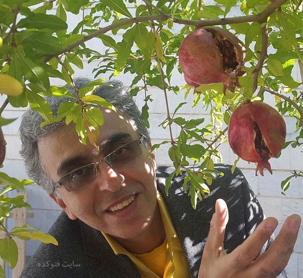 عکس و بیوگرافی رضا رفیع مجری