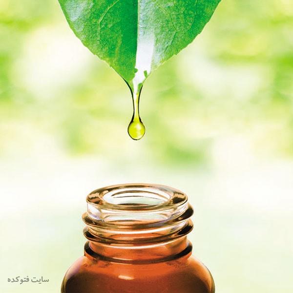 خاصیت روغن درخت چای برای عفونت واژن