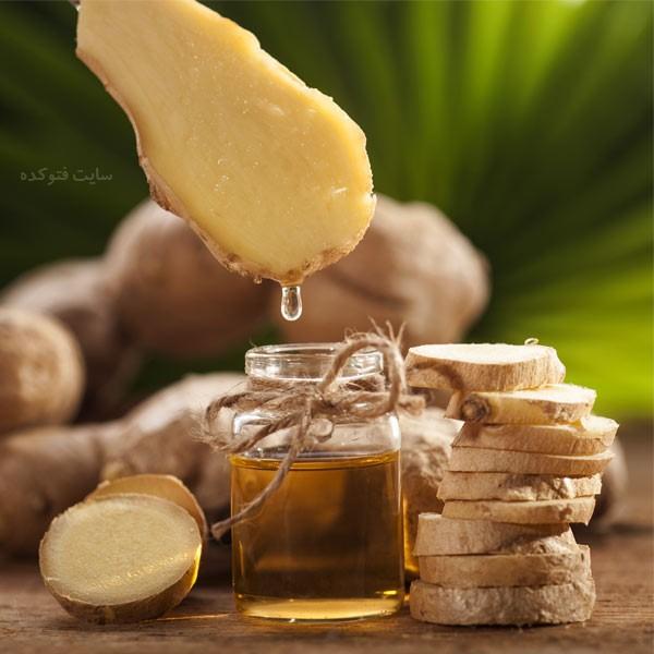 خاصیت روغن زنجبیل برای تنبلی تخمدان و بواسیر با خواص طب سنتی
