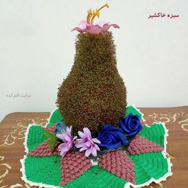 آموزش طرز تهیه سبزه خاکشیر برای عید نوروز
