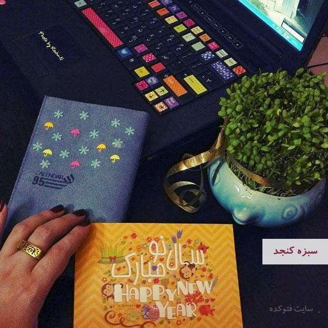 آموزش طرز تهیه سبزه کنجد برای عید نوروز