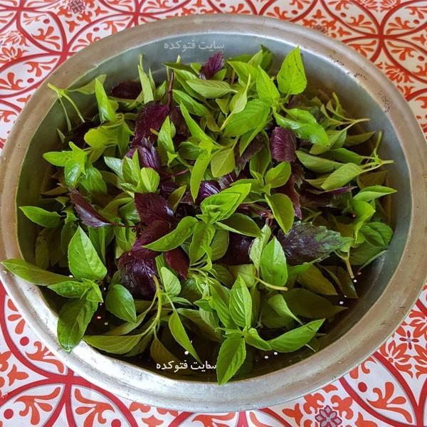 ریحان در سبزیجات معطر