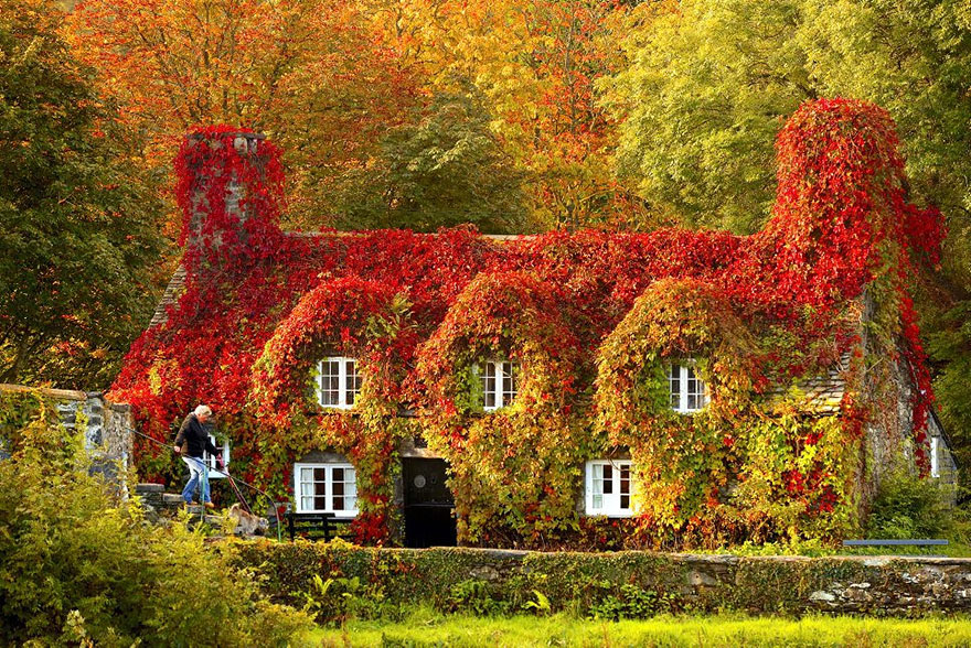 عکس قبل و بعد پاییزی با کیفیت بالا,عکس های پاییزی از یک مکان در تابستان,عکس های فصل پاییز,عکس پاییزی زیبا,عکس دسکتاپ پاییزی,عکس پاییزی hd,پاییزه برگ ریزان