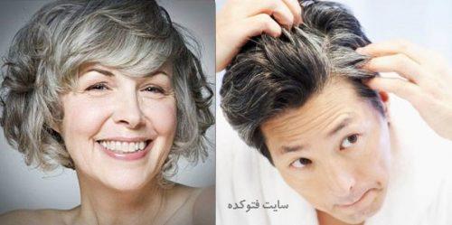 درمان سفیدی مو با هلیله سیاه و مواد غذایی