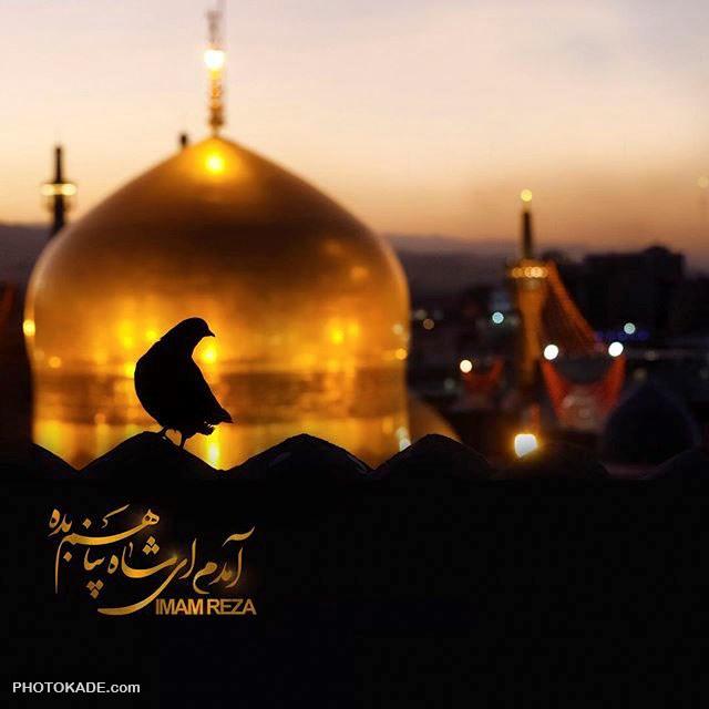عکس و متن شهادت امام رضا