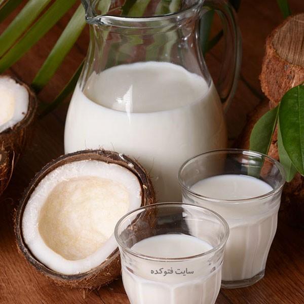 تفاوت شیر نارگیل با آب نارگیل + شیر نارگیل از کجا بخریم