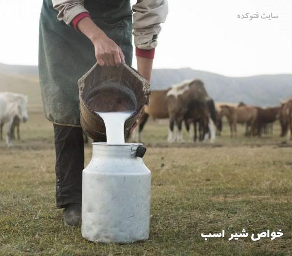 خواص شیر اسب برای انسان در سلامتی