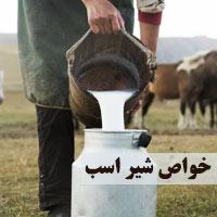 خواص شیر اسب | 15 خاصیت شیر اسب برای سلامتی