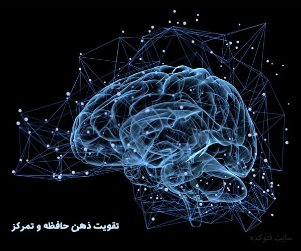 مواد غذایی برای افزایش تمرکز و تقویت ذهن
