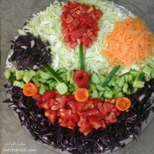 tazein-salad-ir-photokade (17)