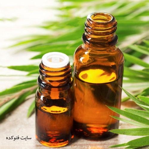 درمان عفونت واژن در طب سنتی روغن درخت چای