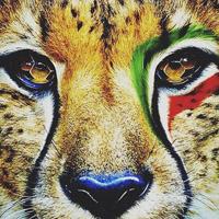 عکس نوشته پروفایل تیم ملی فوتبال + عکس پرچم ایران