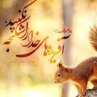 عکس پروفایل احادیث امامان + عکس نوشته احادیث زیبا