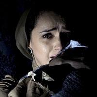 فوت برادر ترانه علیدوستی در چهارشنبه سوری