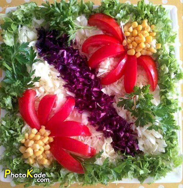 tzein-saladfasli-photokade (1)