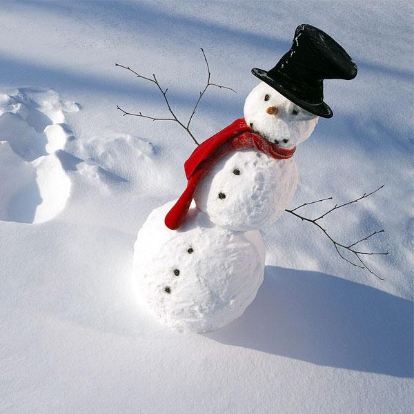 تحقیق برای زمستان و برف